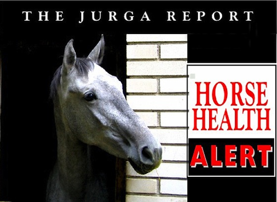 The Jurga Report horse health alert