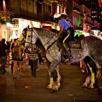 COPD: Police Horses Need Healthcare, Too