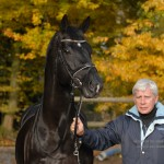 Totilas' Owner Deflated by Stallion's Setbacks, Vows Stallion Will Excel in Show Ring in 2013; Breed...