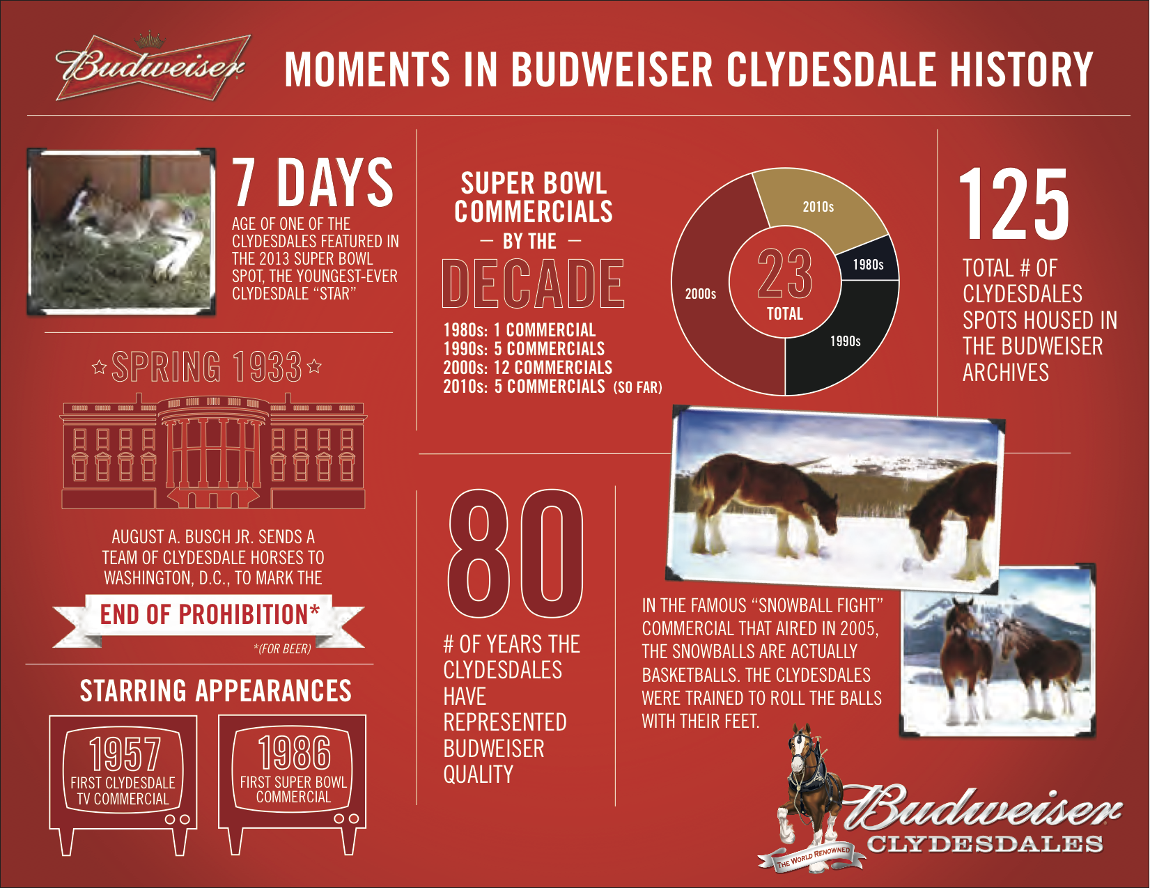 Budweiser Clydesdale infographic history facts
