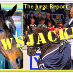 Newsjacked! Rachel Alexandra Replaces Totilas as PETA's Equine Welfare Target
