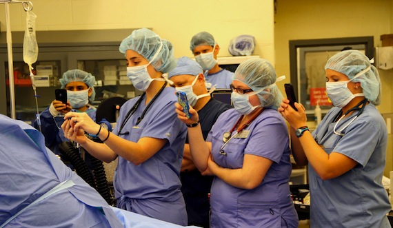 Observers during surgery for Northstar horse