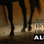 Disease Update: Colorado, Maryland, Michigan, New Jersey and South Carolina Report Horses with EEE o...
