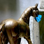 Can We Predict, Prevent and Minimize Equine Influenza Outbreaks?