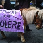 As World Equestrian Games Approach, Horses and Riders Protest in Paris, Where Police Horses Perform...