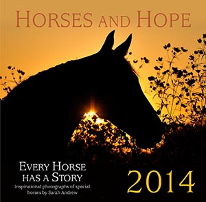Horses and Hope calendar cover 2013