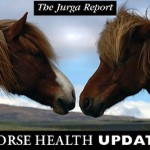 No News Is Good News: State Vet Office and Slovis Confirm that Kentucky Horse Disease Rumors Are Fal...