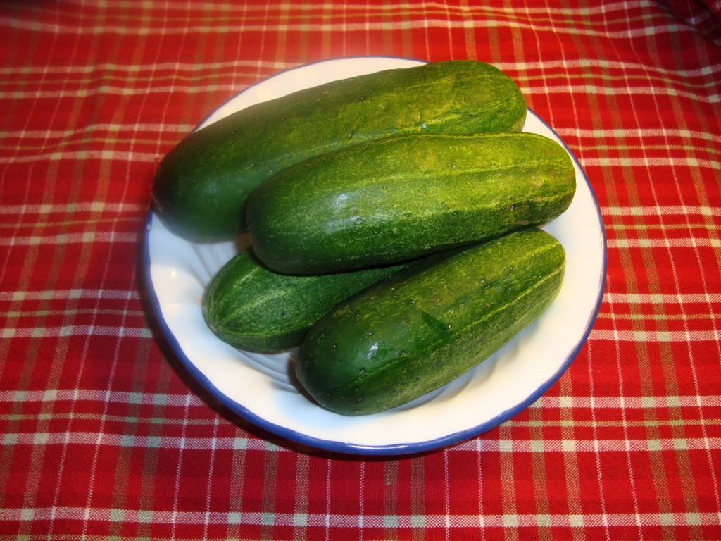 Cucumber Weight Loss