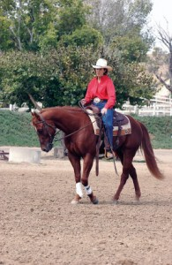"Set your horse up to succeed by using your aids in a way that enables him to ""find"" what you want. Only when he understands a movement, such as bending, should you begin asking him to do it a specific way."
