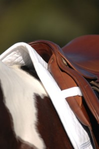 English Saddle Pad | Photo By: Cappy Jackson