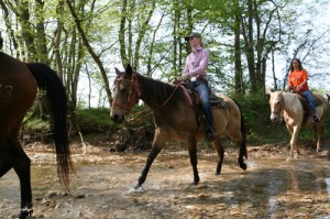 Darley Newman, Randall Mitchell, and riders from Equine Adventures at Wranglers Riding Stables at Land Between the Lakes National Recreation Area. Photo by Chip Ward