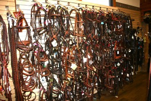 Wall of bridles