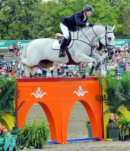 McLain Ward and Antares F on their way to winning the $1 million Pfizer Animal Health Grand Prix