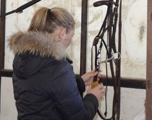 Cleaning bridle
