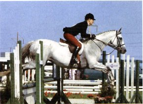 Jumping Clinic April 2008