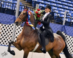 Hunter Chancellor, winner of the 2012 USEF Saddle Seat Medal Final, riding Imagine My Surprise.