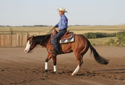 Starting a Reining Spin from Horse&Rider | EquiSearch
